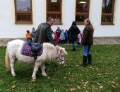 Sv. Martin na bílém koni v MŠ